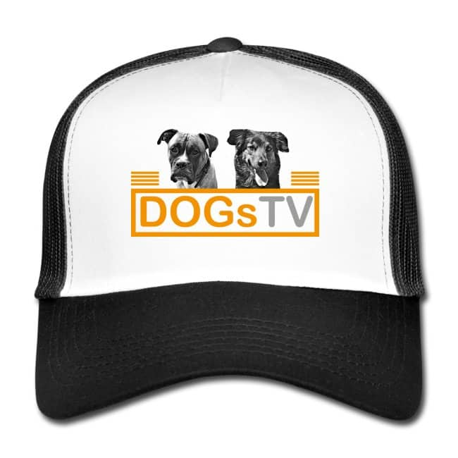dogstv cap spreadshop